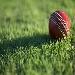 Cricket Field Rentals